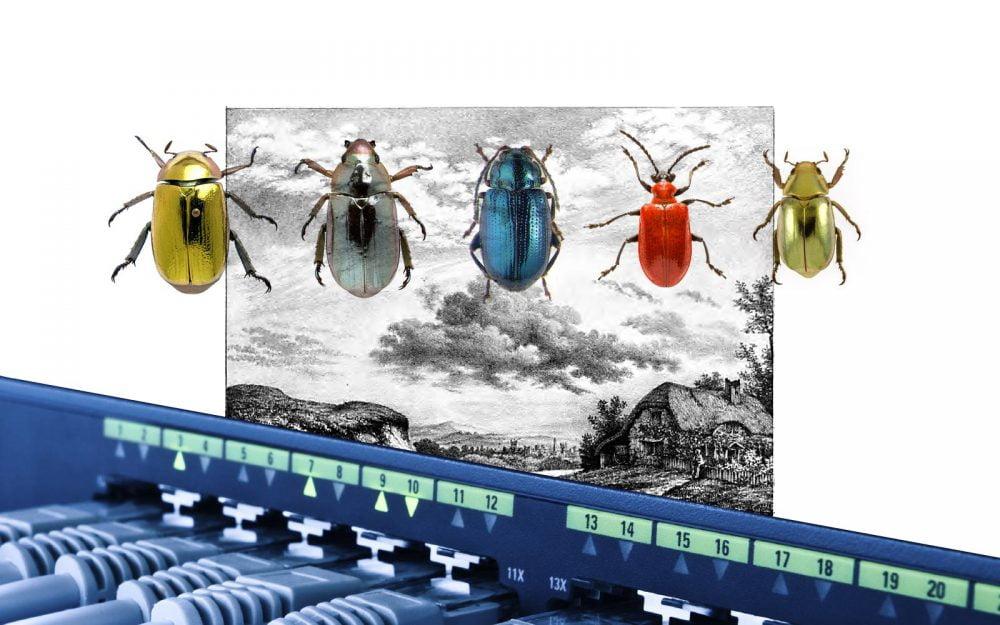 gatheringcloud_plate3_bugs