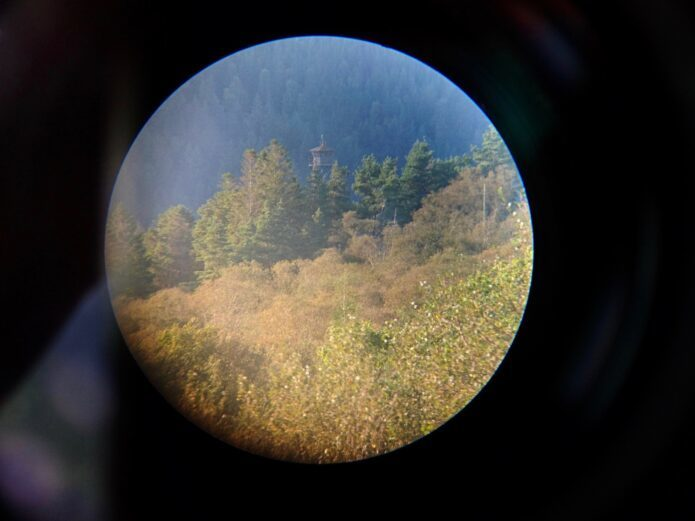 Image of Watching the Watcher 2019 by B.D. Owens. Image shows a black background with circular image within. In the circle there are various evergreen trees and a surveillance tower partially hidden by trees.