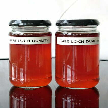 Image by of BD Owens, Gare Loch Duality Jelly